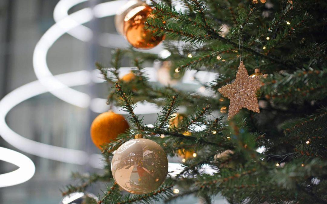 Zdrowych iradosnych świąt Bożego Narodzenia życzy Eximius Park