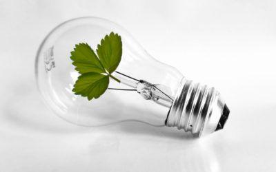 Ekologia jest ważna – pamiętajmy oinicjatywie Godzina dla Ziemi!